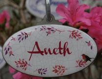 Aneth 2
