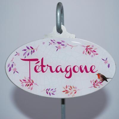 Tétragone