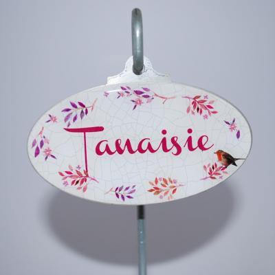 Tanaisie