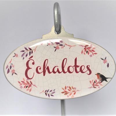 Echalotes