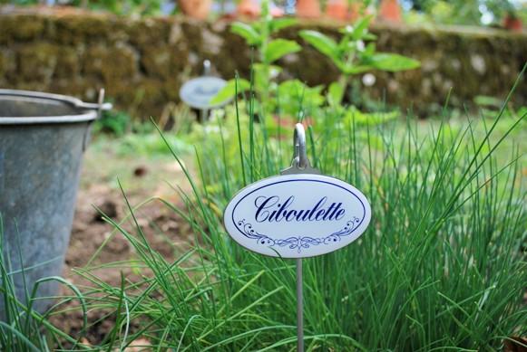 Etiquette jardin botanique
